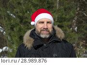 Купить «Портрет мужчины с бородой в шапке Санта Клауса на фоне зимнего леса», эксклюзивное фото № 28989876, снято 9 марта 2018 г. (c) Елена Коромыслова / Фотобанк Лори