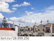 Купить «Mausoleums at Cemetery on Dia de Todos los Santos (All Saints' Day), in Salobreña, Granada, Spain.», фото № 28999256, снято 2 ноября 2015 г. (c) age Fotostock / Фотобанк Лори