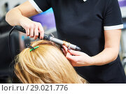 Купить «hairdo in beauty salon. hairdresser making coiffure with curl to wonam», фото № 29021776, снято 28 марта 2017 г. (c) Дмитрий Калиновский / Фотобанк Лори