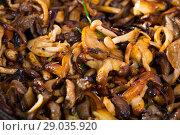 Купить «Pan with freshly fried mushrooms», фото № 29035920, снято 18 сентября 2018 г. (c) Яков Филимонов / Фотобанк Лори