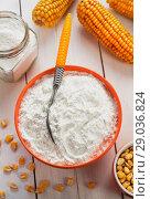 Купить «Starch and corn cob», фото № 29036824, снято 18 марта 2018 г. (c) Надежда Мишкова / Фотобанк Лори
