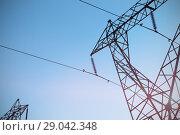 The evening electricity pylon silhouette. Стоковое фото, агентство Wavebreak Media / Фотобанк Лори