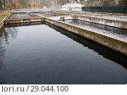 Купить «Tanks outdoors of fish farm», фото № 29044100, снято 4 февраля 2018 г. (c) Яков Филимонов / Фотобанк Лори