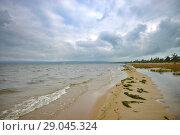 Купить «Берег озера Арахлей, Беклемиишевские озёра», фото № 29045324, снято 18 августа 2018 г. (c) Геннадий Соловьев / Фотобанк Лори