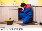 Купить «Plumber repairing wash basin at kitchen», фото № 29048948, снято 14 июня 2018 г. (c) Elnur / Фотобанк Лори