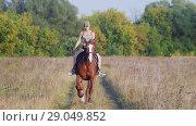 Young girl jockey in a baseball cap riding a horse on the field along the forest. Стоковое видео, видеограф Константин Шишкин / Фотобанк Лори