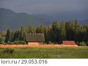 Chocholowska Valley, near Witow, Podhale Region, Polish Tatra mountains, Malopolska Province (Lesser Poland), Poland, Central Europe. Стоковое фото, фотограф Christian Goupi / age Fotostock / Фотобанк Лори