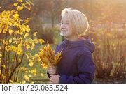 Купить «Счастливая девочка блондинка собирает букет из желтых листьев. Осень, прогулка в парке, солнечный вечер.», фото № 29063524, снято 6 ноября 2017 г. (c) Милана Харитонова / Фотобанк Лори