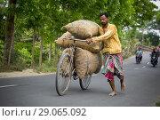 Купить «Farmers carry potato bags on their bicycles at a village in Munshiganj, near Dhaka, Bangladesh.», фото № 29065092, снято 16 марта 2018 г. (c) age Fotostock / Фотобанк Лори