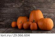 Pumpkins on wooden background. Стоковое фото, фотограф Иван Михайлов / Фотобанк Лори