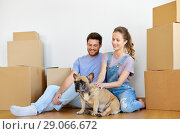 Купить «happy couple with boxes and dog moving to new home», фото № 29066672, снято 4 июня 2017 г. (c) Syda Productions / Фотобанк Лори