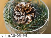 Купить «close up of christmas decoration of fir and cone», фото № 29066908, снято 15 ноября 2017 г. (c) Syda Productions / Фотобанк Лори