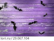 Купить «black bats over ultra violet shabby boards», фото № 29067104, снято 6 июля 2017 г. (c) Syda Productions / Фотобанк Лори