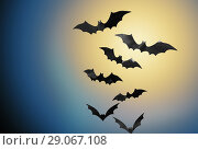 Купить «bats flying over moonlight in night sky background», фото № 29067108, снято 6 июля 2017 г. (c) Syda Productions / Фотобанк Лори