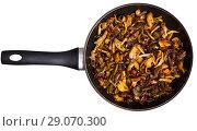 Купить «Delicious freshly cooked fried shitake mushrooms in a frying pan», фото № 29070300, снято 18 сентября 2018 г. (c) Яков Филимонов / Фотобанк Лори