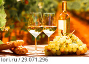 Купить «glass of White wine ripe grapes and bread on table in vineyard», фото № 29071296, снято 19 октября 2018 г. (c) Татьяна Яцевич / Фотобанк Лори