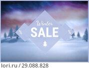 Купить «Winter Sale with blue and purple illustrated background, text on triangle», фото № 29088828, снято 26 сентября 2018 г. (c) Wavebreak Media / Фотобанк Лори