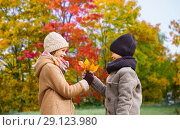 Купить «kids with autumn maple leaves over park background», фото № 29123980, снято 12 октября 2014 г. (c) Syda Productions / Фотобанк Лори