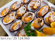 Raw bivalve shellfishes with lemon. Стоковое фото, фотограф Яков Филимонов / Фотобанк Лори