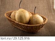 Купить «Груши, лежащие на тарелке», фото № 29125916, снято 2 сентября 2018 г. (c) Литвяк Игорь / Фотобанк Лори
