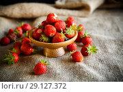 Купить «ripe red strawberry on a table with burlap», фото № 29127372, снято 6 июня 2018 г. (c) Peredniankina / Фотобанк Лори