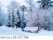 Купить «Winter landscape with falling snowflakes - bench covered with snow among frosty winter trees in the city park», фото № 29127796, снято 11 декабря 2017 г. (c) Зезелина Марина / Фотобанк Лори
