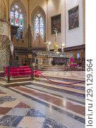Купить «Cathedral interior, Perugia, Umbria, Italy.», фото № 29129964, снято 28 февраля 2018 г. (c) age Fotostock / Фотобанк Лори