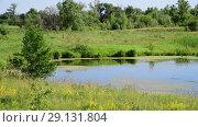 Купить «small plain lake In central part of Russia», видеоролик № 29131804, снято 22 июня 2018 г. (c) Володина Ольга / Фотобанк Лори