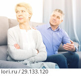 Купить «annoyed mature couple quarreling at home with each other», фото № 29133120, снято 24 февраля 2020 г. (c) Яков Филимонов / Фотобанк Лори