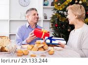 Купить «Husband and wife exchange holiday gifts for Christmas and New Year», фото № 29133244, снято 19 марта 2019 г. (c) Яков Филимонов / Фотобанк Лори