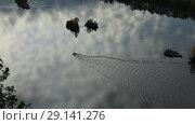 Купить «Моторная лодка идет по реке. Вид сверху», видеоролик № 29141276, снято 20 октября 2018 г. (c) Евгений Ткачёв / Фотобанк Лори