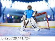 Купить «Young goaltender preparing to catch the puck», фото № 29141724, снято 1 декабря 2017 г. (c) Сергей Новиков / Фотобанк Лори