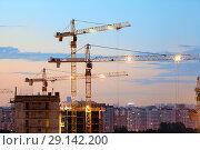 Купить «Башенные краны на строительной площадке в вечернее время суток», фото № 29142200, снято 14 июня 2014 г. (c) Кекяляйнен Андрей / Фотобанк Лори