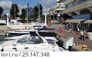 Купить «Sochi, Russia - June 2. 2018. sailing yacht Sundance At the pier in seaport», видеоролик № 29147348, снято 27 сентября 2018 г. (c) Володина Ольга / Фотобанк Лори