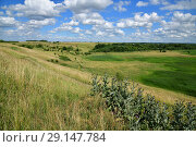 landscape from forest and steppe in Russia. Стоковое фото, фотограф Володина Ольга / Фотобанк Лори