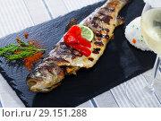 Купить «Baked trout with white wine, garnish of rice, grilled bell pepper», фото № 29151288, снято 22 октября 2018 г. (c) Яков Филимонов / Фотобанк Лори