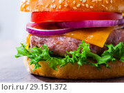 Купить «Tasty grilled hamburger with pork patty, tomato, cheese and lettuce», фото № 29151372, снято 16 октября 2018 г. (c) Яков Филимонов / Фотобанк Лори