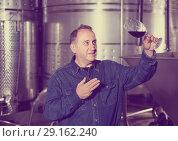 Купить «Worker of winery costs with glass of red wine near tanks», фото № 29162240, снято 12 октября 2016 г. (c) Яков Филимонов / Фотобанк Лори