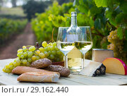 Купить «White wine with cheese, bread and grapes in vineyard», фото № 29162440, снято 19 октября 2018 г. (c) Яков Филимонов / Фотобанк Лори