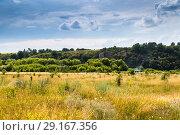 Купить «Галичья гора», фото № 29167356, снято 7 июля 2018 г. (c) Ольга Сейфутдинова / Фотобанк Лори