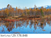 Купить «Autumn landscape with a swampy pond and yellowed trees in the foothill valley», фото № 29178848, снято 30 сентября 2018 г. (c) Виктория Катьянова / Фотобанк Лори