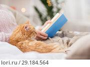 Купить «red cat and female owner reading book at home», фото № 29184564, снято 15 ноября 2017 г. (c) Syda Productions / Фотобанк Лори