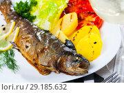 Купить «Picture of tasty baked whole trout with potatoes, greens and tomatoes», фото № 29185632, снято 19 июня 2019 г. (c) Яков Филимонов / Фотобанк Лори