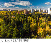 Купить «high-rise city houses surrounded by autumn forest in Russia in Moscow», фото № 29187868, снято 8 октября 2018 г. (c) Володина Ольга / Фотобанк Лори