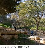Купить «Tourists at Ben Gurion burial site, Ben Gurion Memorial, Sde Boker, Israel», фото № 29188572, снято 20 июля 2019 г. (c) Ingram Publishing / Фотобанк Лори