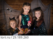 Купить «Children for the holiday Halloween», фото № 29189260, снято 8 сентября 2018 г. (c) Типляшина Евгения / Фотобанк Лори
