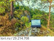 Купить «An outdoor laptop stands on a rock in a dense forest.», фото № 29214708, снято 9 сентября 2017 г. (c) Акиньшин Владимир / Фотобанк Лори