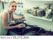 Купить «Young female customer buying dried beans», фото № 29215264, снято 18 октября 2018 г. (c) Яков Филимонов / Фотобанк Лори