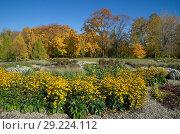 Купить «Ландшафтный дизайн в осеннем парке», фото № 29224112, снято 12 октября 2018 г. (c) Елена Коромыслова / Фотобанк Лори