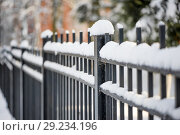 Купить «metal fence in winter covered with snow», фото № 29234196, снято 7 февраля 2018 г. (c) katalinks / Фотобанк Лори